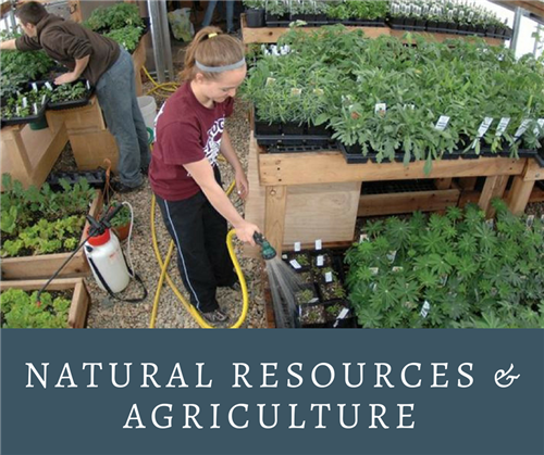 Natural Resources & Agriculture