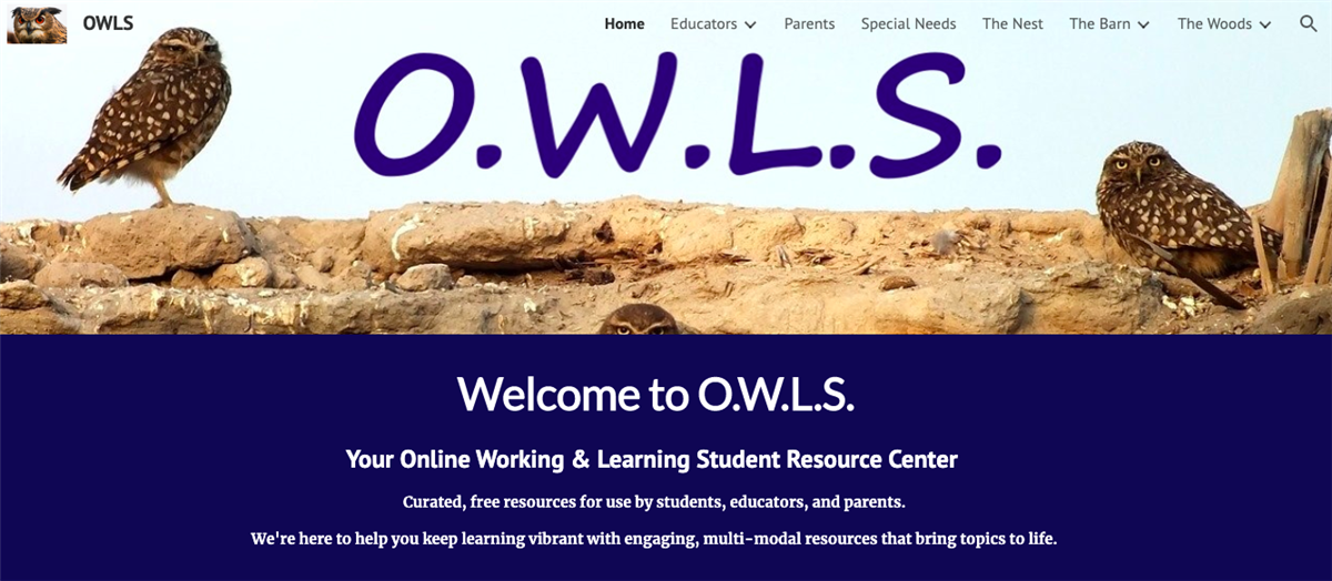 Online Working Learning Student Resources